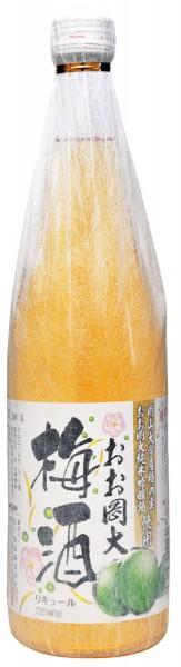 おお岡大 梅酒 720ml
