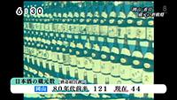 日本酒の蔵元 新戦略6
